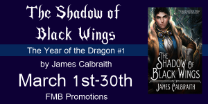 ShadowOfBlackWingTour