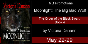Moonlight-The Big Bad Wolf Banner