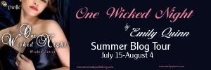 One Wicked Night banner