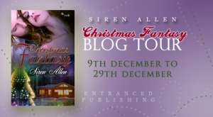 christmasfantasytourbanner2